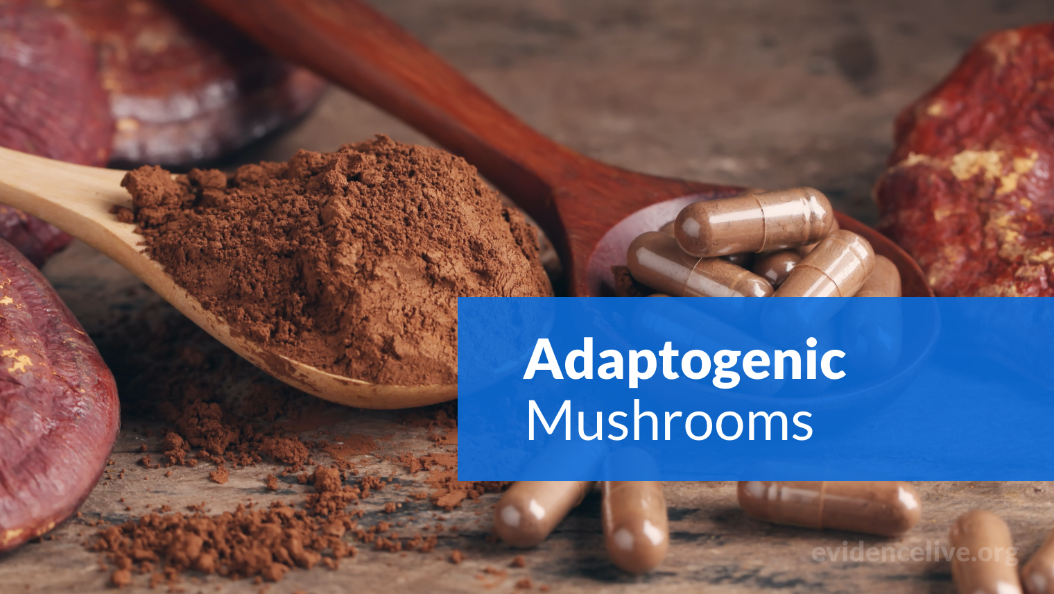 What Are Adaptogenic Mushrooms? Health Benefits, Risks, and Types