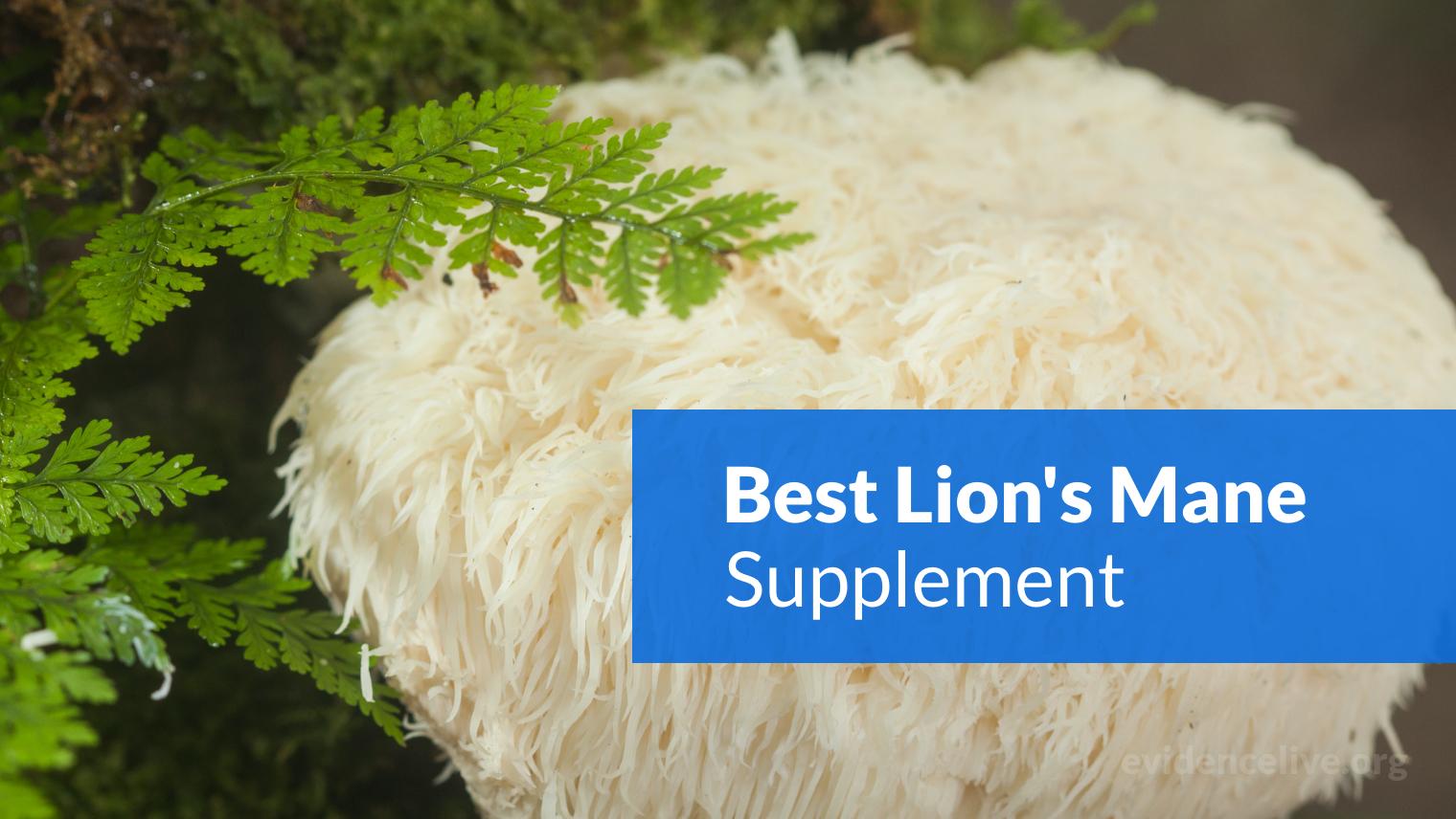 Best Lion's Mane Mushroom Supplement (Capsules & Powder)