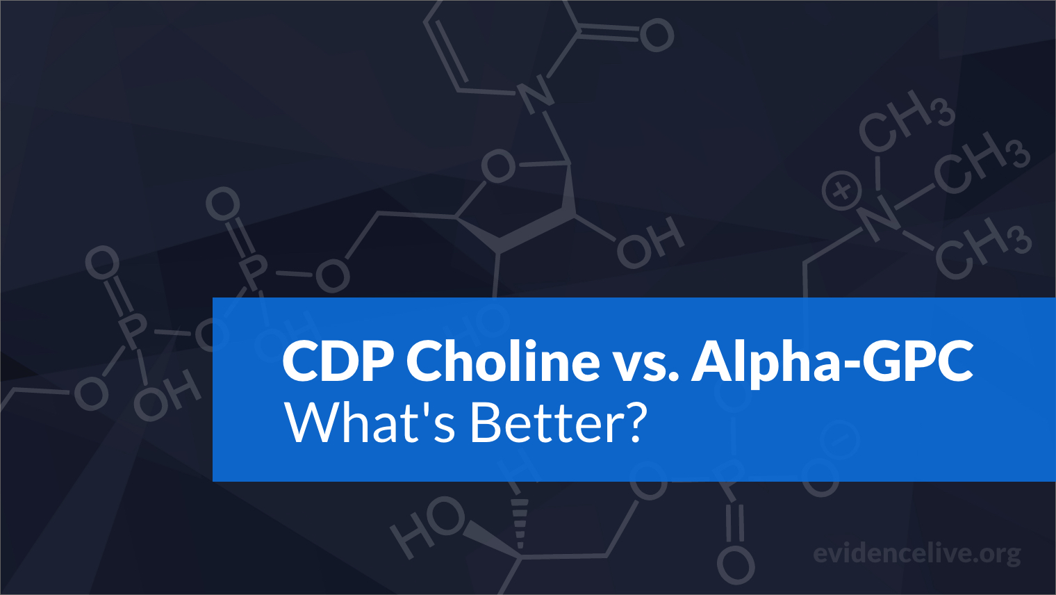 CDP Choline vs. Alpha-GPC: Differences and What's Better