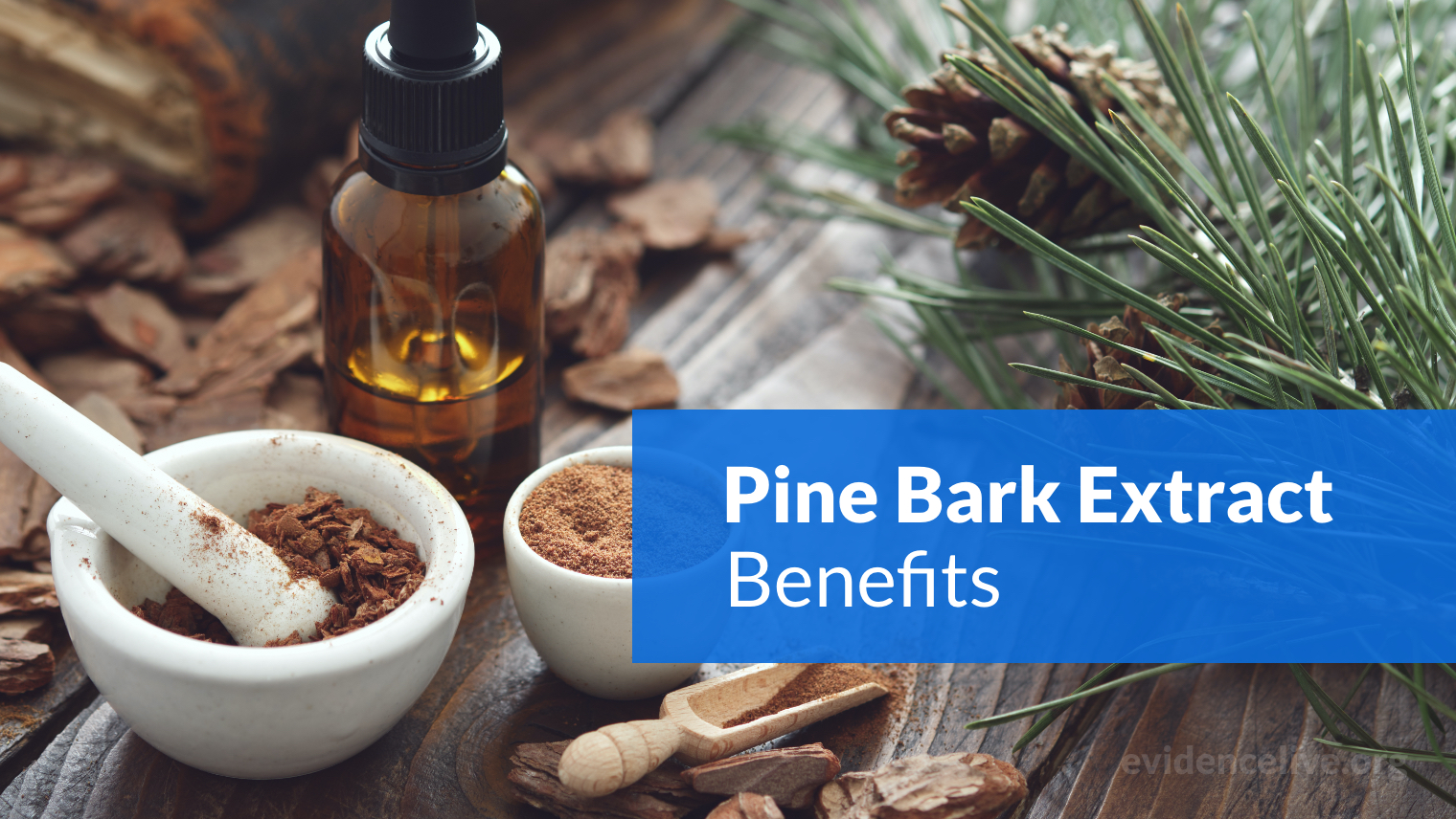 Pine Bark Extract Benefits: What Is It Good For?